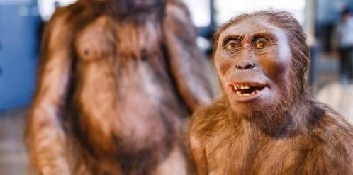 Nové doklady o vývoji člověka