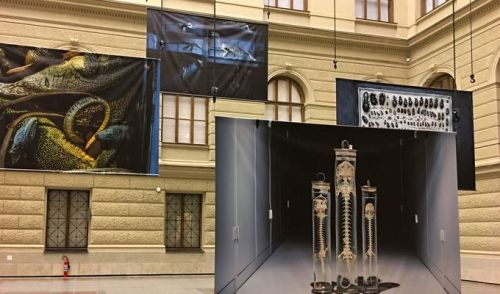 Národní muzeum bez bariér