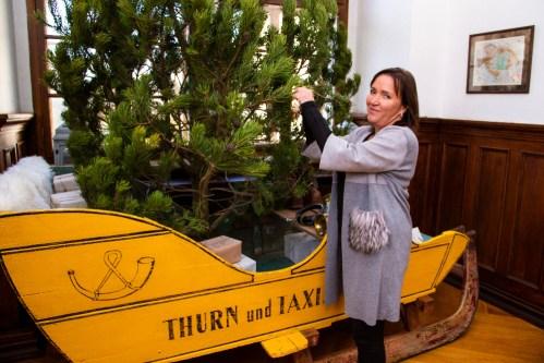 Příběh vánočního stromečku s dvaceti rozzářenými vánočními stromky