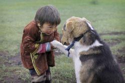 Podle nové studie byli psi domestikováni ve Střední Asii