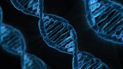 Budeme ukládat data do DNA?