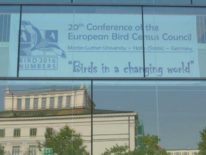 EBCC-konference