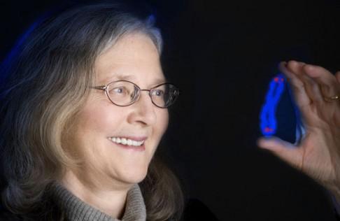 Meditace a dlouhý život: propojení na úrovni molekul
