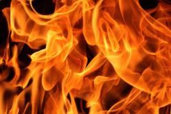 Zoologická zahrada protestně spálila rohovinu