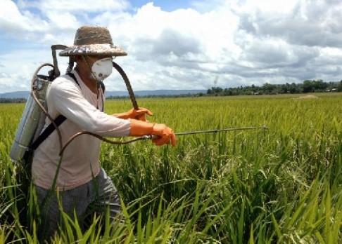 Češi zjistili, jak omezit pesticidy