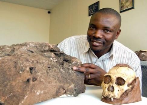 Vykukující zub prozradil australopitéka