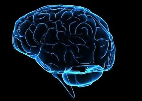 Když selže časový spínač v mozku