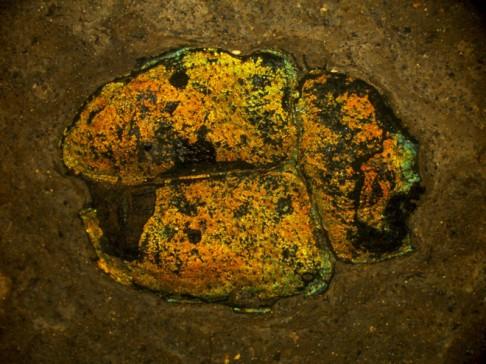 Prehistorické barvy na světě