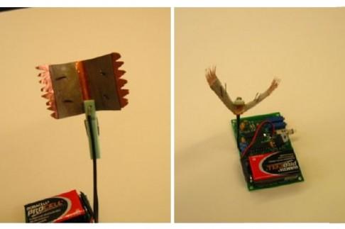 Robot imitující mucholapku