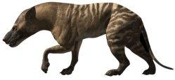 Objevena unikátní fosilie pravěkého predátora