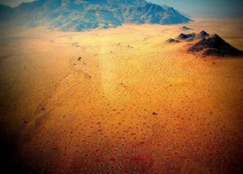 Jak vznikají záhadné kruhy v namibijské poušti?