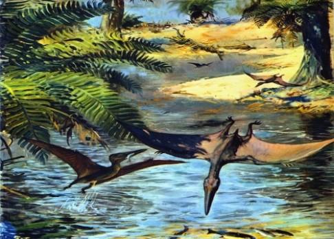 První ptáci létali už před 163 000 000 lety