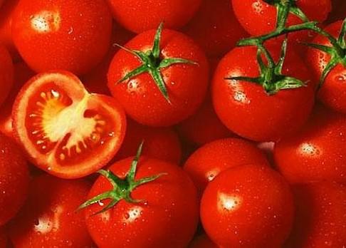 Proč jsou dnešní rajčata mdlé chuti?