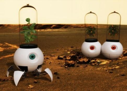 Robotická rostlina už je na cestě