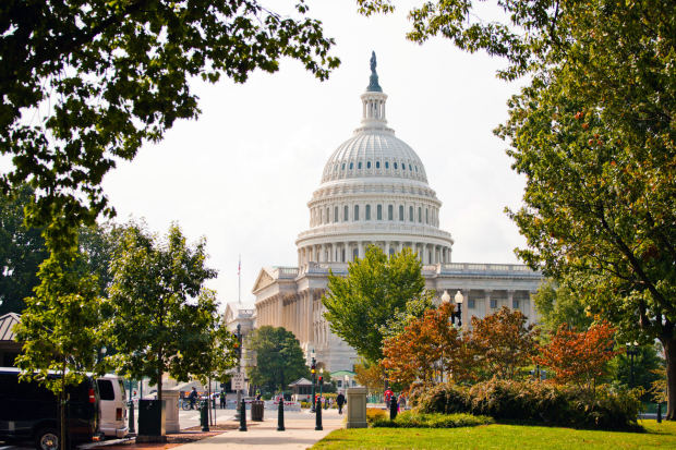 photo shows U.S> Capitol surrounded by fall trees