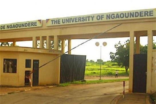 Image result for Université de Ngaoundéré