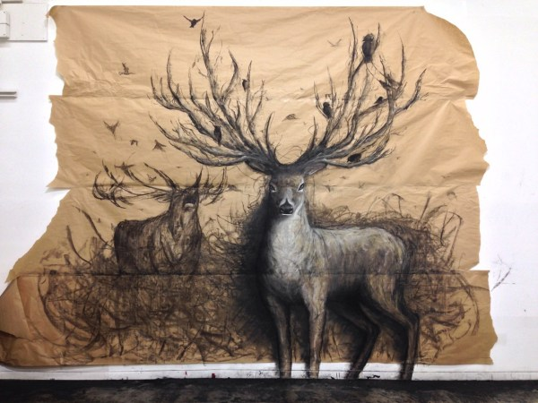 Drawing Art Animals Draw Animal Chalk Artist Wildlife Charcoal Artwork Deer Shoutout