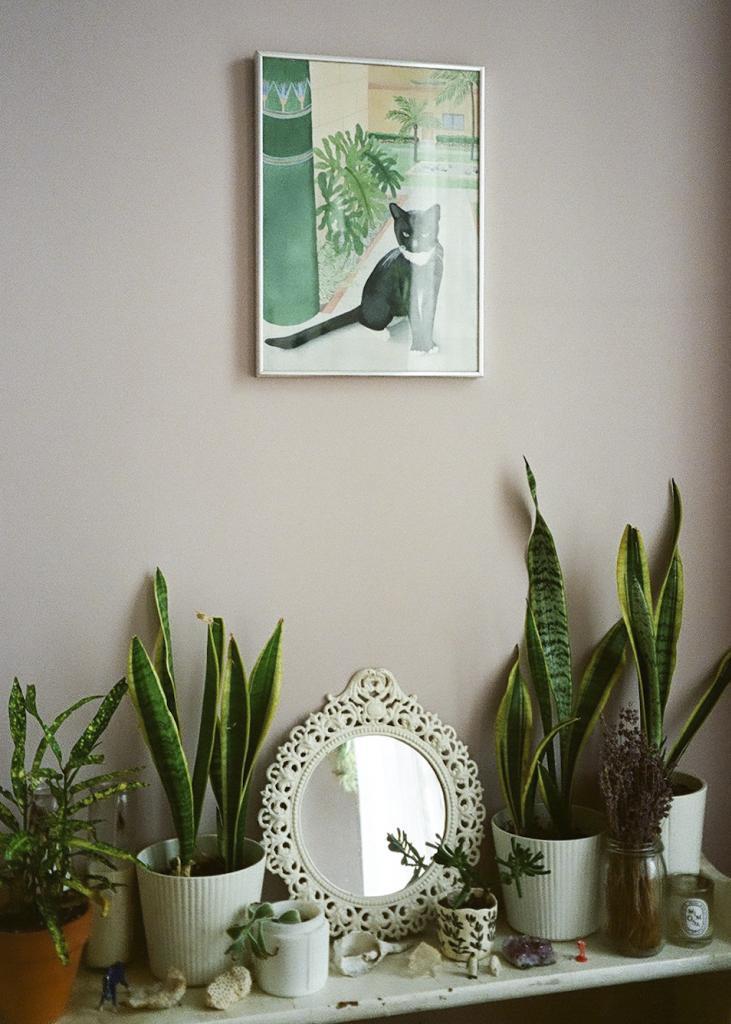 bedroom Dream Home plants succulents Leah Reena Goren leah