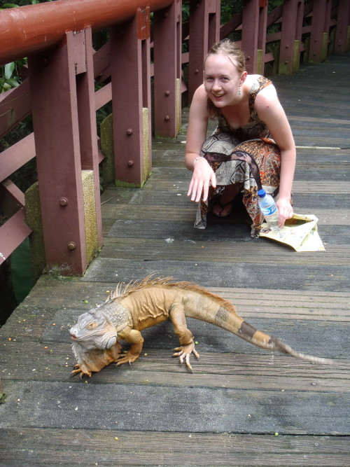 lizard!!