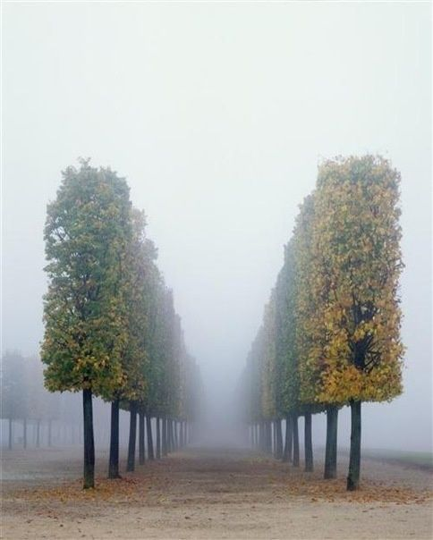 Versay, Fransa Sonbahar