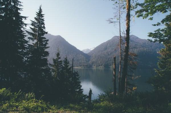 Washington Mountain Forest Landscape Tumblr
