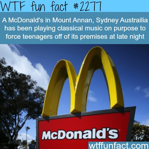 A McDonalds's in Mount Annan - WTF fun facts