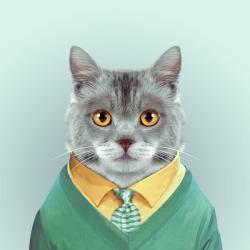 CAT por Yago Partal para ZOO RETRATOS