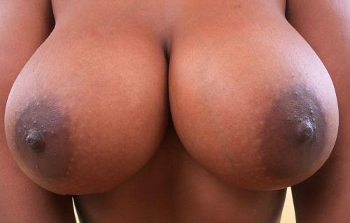 nicerackbigjack:  BIG Tits & Dicks