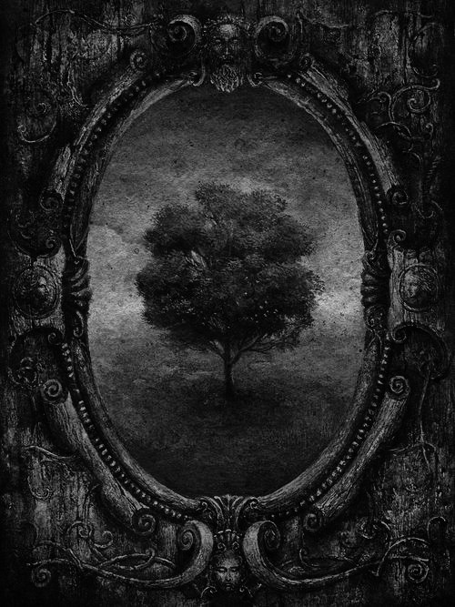 What do you see in the picture?<br /> Do you only see a tree?<br /> Or do you see more?<br /> Do you see light peeking<br /> out from the tree?<br /> I see light and shadows<br /> and a whole horror story.<br /> But that's just me.
