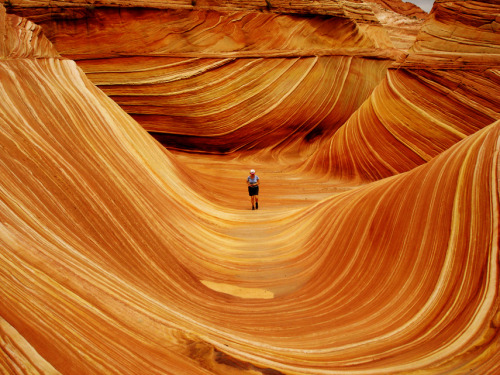 illusionwanderer:</p> <p>Photo: Greg Mote/Flickr</p> <p>The Wave, Arizona, U.S.</p> <p>Our problems can feel insurmountable at times.<br /> Obstacles too big to overcome.<br /> Life can be one long battle.<br /> But if we persevere we can reach our goals.<br /> If we do it one step at a time,<br /> we can fulfill our dreams<br /> and even find new ones.
