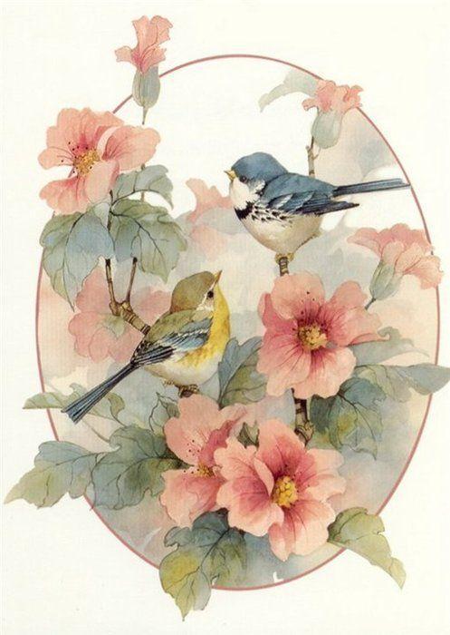 drawing art birds artwork flowers