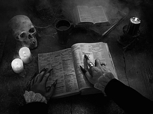 The Dead will find you.<br /> You can't escape from them.<br /> After the sun goes down,<br /> they own the streets of Oasis.<br /> No one is safe.<br /> The Dead love their games.<br /> The Dead Game by Susanne Leist