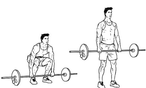 For Fit Friday today, we will be looking at the Deadlift