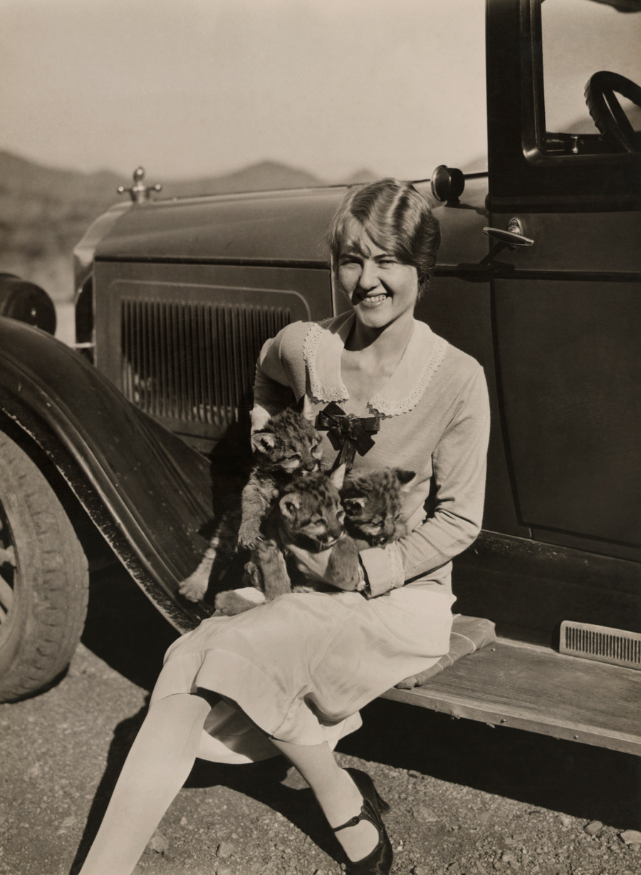 A woman holds three seven-month old mountain lion kittens in Arizona.Photograph by Clifton R. Adams, National Geographic