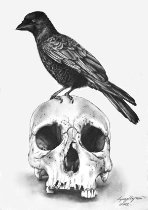gothic drawings pencil skull amazing drawing raven pencils ten artists animal sketch skulls sketching dark sketches cool simple realistic draw