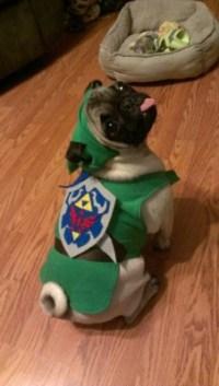 Halloween zelda link pug legend of zelda princess zelda ...