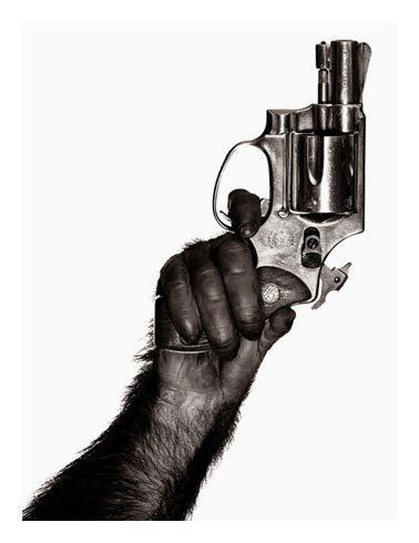 Even a monkey can use a gun