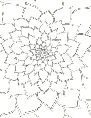 flower drawings flowers drawing sketches draw easy pretty cool sketch doodle fun pencil