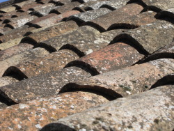 Red tile roofs