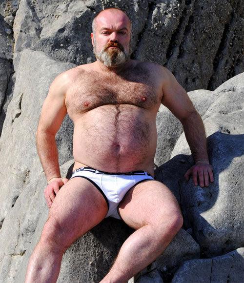Big Chubby Bear Dick  Hot Girls Wallpaper