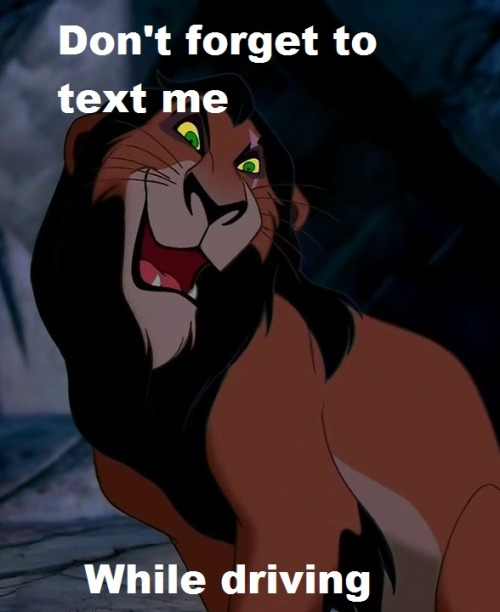 Image result for memes of scar lion king