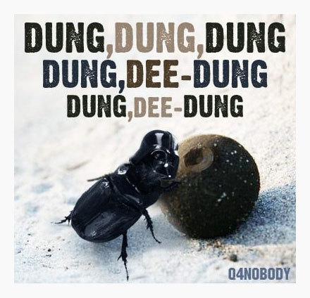 Darth Dung