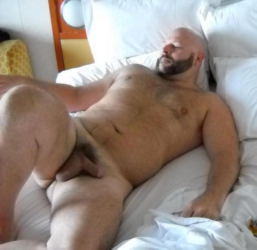 Beefy Bear Tumblr
