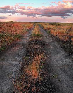 onceuponawildflower: take me there.