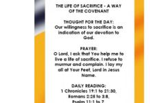DECEMBER 2018 EDITION OF THE SEEDS OF DESTINY DAILY DEVOTIONAL