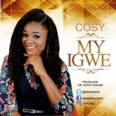 my igwe by cosy