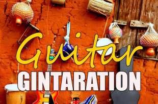 dexdan guitar gintaration 247gvibes