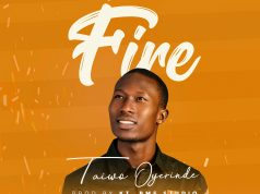 I See The Fire - Taiwo Oyerinde
