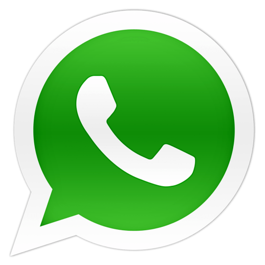 Whatsapp conference call