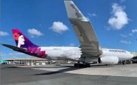 Hawaii airline flight